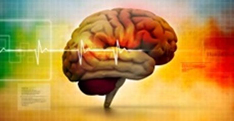 ¿Cómo mejorar la capacidad cerebral? - ¿cómo mejorar la concentración? ¿cómo mejorar la atención? - ¿Cómo mejorar la memoria?